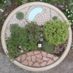 Living Miniature Garden in Planter, Top View