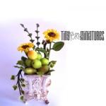 Flower & Fruit Arrangement by Teresa Martinez