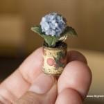 Hydrangea in Can by Teresa Martinez