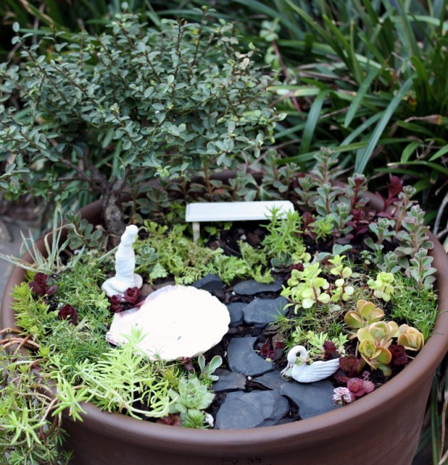 Lovely Living Miniature Gardens By Lynn McEntire
