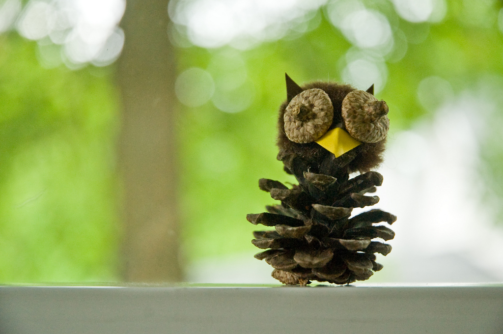 Pine Cone Owl by hlkjgk on flickr