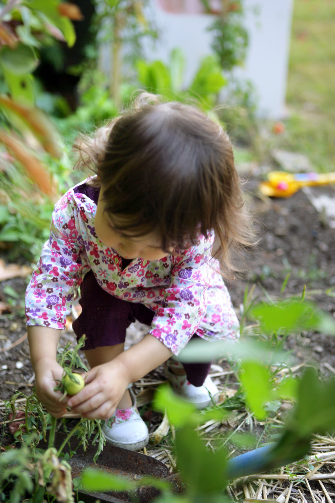 A Young Gardener Jessica Noonan Stockfresh